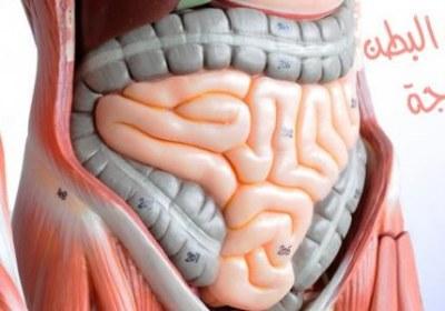 ما معنى انسداد الأمعاء و ما هي أعراضه